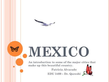 MEXICO An introduction to some of the major cities that make up this beautiful country. Patricia Alvarado EDU 3460 – Dr. Qureshi.