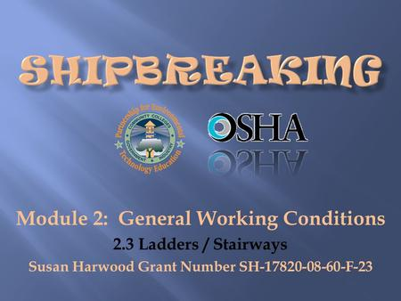 Module 2: General Working Conditions 2.3 Ladders / Stairways Susan Harwood Grant Number SH-17820-08-60-F-23.