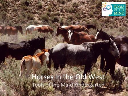 Horses in the Old West Tools of the Mind Kindergarten.