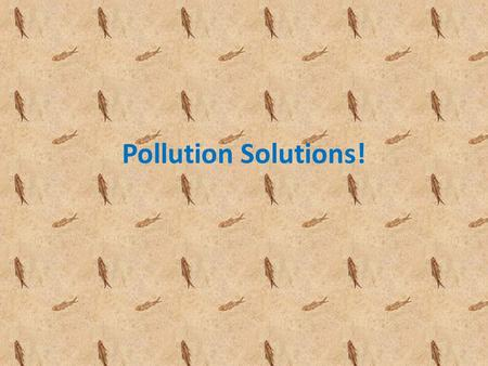 Pollution Solutions! How pollution is caused: Pollution can be caused by oil tankers crashed together, or it could be caused by oil tanks caught in a.