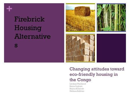+ Changing attitudes toward eco-friendly housing in the Congo Lindsay MacLeod Reina Ingham Reyna Schenck Melissa Sullivan Firebrick Housing Alternative.