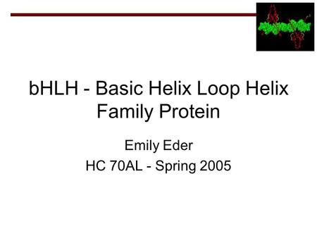 BHLH - Basic Helix Loop Helix Family Protein Emily Eder HC 70AL - Spring 2005.