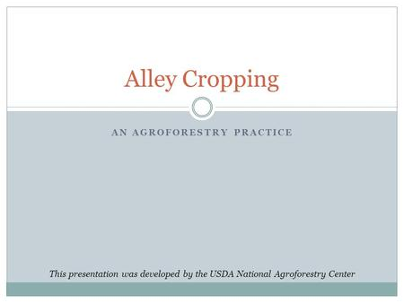 An Agroforestry Practice