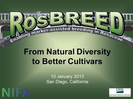 From Natural Diversity to Better Cultivars 10 January 2013 San Diego, California.