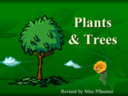 Plants & Trees Revised by Miss Pflaumer.