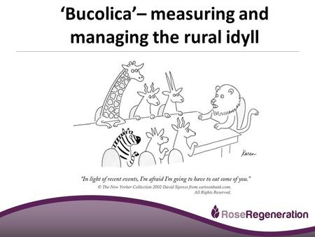 Smithsgore.co.uk 'Bucolica'– measuring and managing the rural idyll.