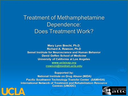 Treatment of Methamphetamine Dependence: Does Treatment Work? Mary Lynn Brecht, Ph.D. Richard A. Rawson, Ph.D Semel Institute for Neuroscience and Human.