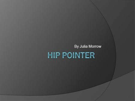 By Julia Morrow. What is a Hip Pointer? A contusion to the iliac crest. In this area it is easier to have an injury due to limited natural protection.