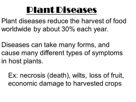 Plant Diseases Plant diseases reduce the harvest of food worldwide by about 30% each year. Ex: necrosis (death), wilts, loss of fruit, economic damage.