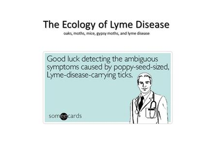 The Ecology of Lyme Disease oaks, moths, mice, gypsy moths, and lyme disease.