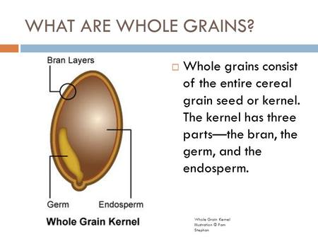 WHAT ARE WHOLE GRAINS?  Whole grains consist of the entire cereal grain seed or kernel. The kernel has three parts—the bran, the germ, and the endosperm.