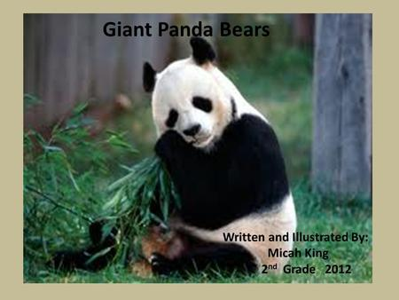 Giant Panda Bears Written and Illustrated By: Micah King 2 nd Grade 2012.