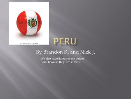 By Brandon K. and Nick J. We also have llamas in the power point because they live in Peru.