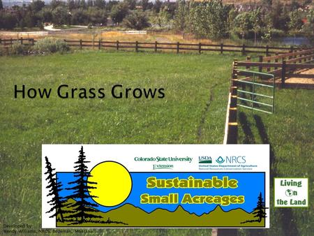 Developed by: Wendy Williams, NRCS, Bozeman, Montana UNCE, Reno, Nev.