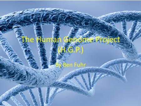 The Human Genome Project (H.G.P.) By Ben Fuhr. What is the Human Genome Project? The Human Genome Project was a great scientific endeavor designed to.