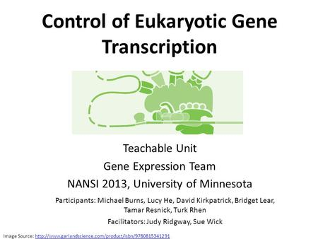 Control of Eukaryotic Gene Transcription Teachable Unit Gene Expression Team NANSI 2013, University of Minnesota Participants: Michael Burns, Lucy He,