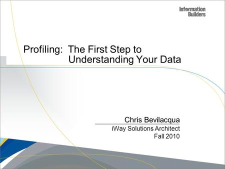 Profiling: The First Step to Understanding Your Data