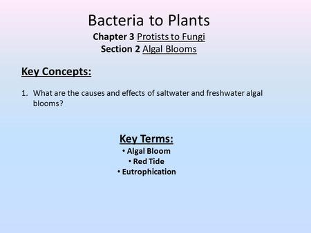 Chapter 3 Protists to Fungi