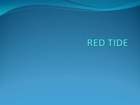 INTRODUCTION Red tide is a phenomenon caused by microscopic algae blooms, during which algae become so numerous that they discolour coastal waters (hence.