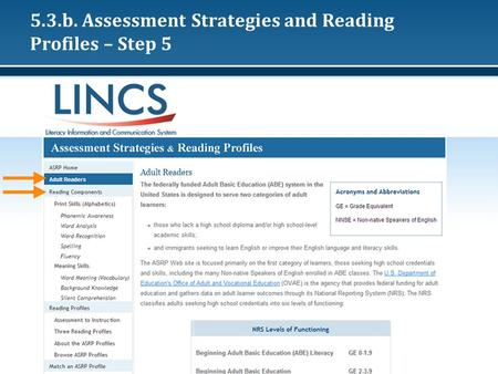5.3.b. Assessment Strategies and Reading Profiles – Step 5.