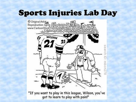 Sports Injuries Lab Day