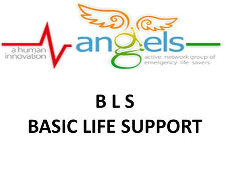 B L S BASIC LIFE SUPPORT. An NGO started on Feb 17 2010 dedicated to Spreading the wings of emergency care in Kerala Spreading awareness of life saving.