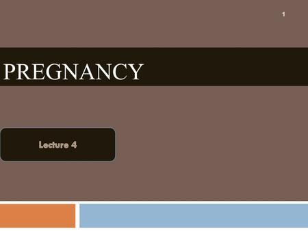 PREGNANCY 1. The Whole Period of Pregnancy Can Be Divided Into Three Stages (Trimesters ): TrimestersWeeks First trimester (early pregnancy)1-12 Second.