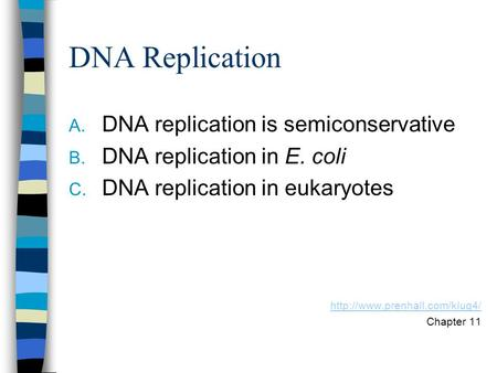 DNA Replication A. DNA replication is semiconservative B. DNA replication in E. coli C. DNA replication in eukaryotes  Chapter.