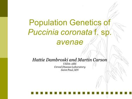 Population Genetics of Puccinia coronata f. sp. avenae Hattie Dambroski and Martin Carson USDA-ARS Cereal Disease Laboratory Saint Paul, MN.