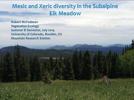 Introduction Subalpine meadows play a crucial role in species diversity, supporting many endangered species of plant and wildlife. Subalpine meadows play.