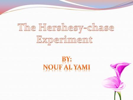 The Hershesy-chase Experiment