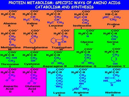SPECIFIC WAYS OF AMINO ACID CATABOLISM