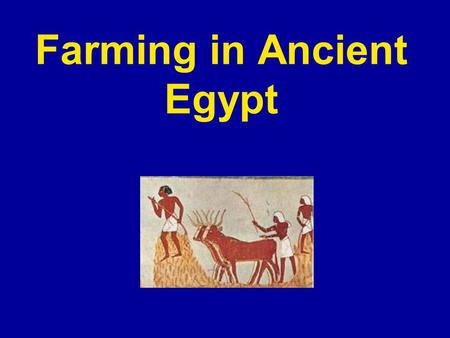 Farming in Ancient Egypt. What crops did the Egyptian Farmers grow? Egyptians grew crops such as wheat, barley, vegetables, figs, melons, pomegranates.