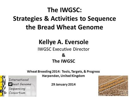 The IWGSC: Strategies & Activities to Sequence the Bread Wheat Genome Kellye A. Eversole IWGSC Executive Director & The IWGSC Wheat Breeding 2014: Tools,