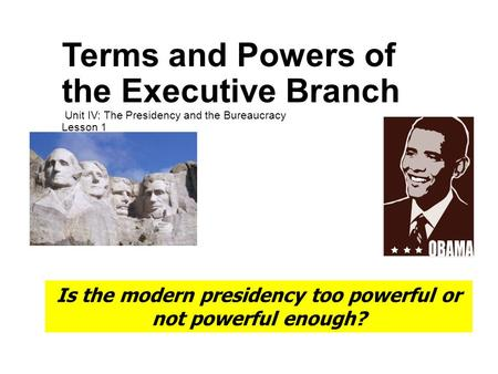 the relationship between the executive branch and the bureaucracy in america