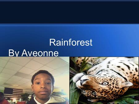 Rainforest By Aveonne. Did you know there are two types of Rainforest -- the temperate and the tropical? Tropical rainforests are found close to the equator.