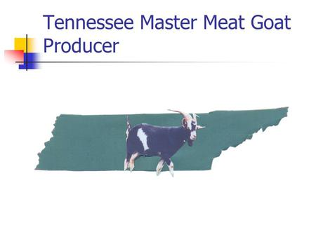Tennessee Master Meat Goat Producer. Business and Financial Planning and Management for Meat Goat Operations John Campbell Rob Holland Aaron Robinson.