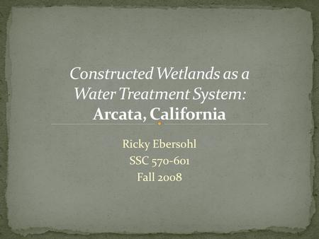 Ricky Ebersohl SSC 570-601 Fall 2008. Wetlands serve to reduce and remove toxins from the environment Wetlands provide a buffer for flood control and.