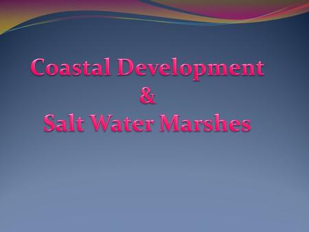 What is Coastal Development? Coastal Development is the development of houses, hotels, or any other form of man made structures built along coast lines.