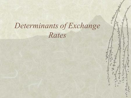 Determinants of Exchange Rates. Why Study Exchange Rates?  To understand the economic environment –Forecasting for planning purposes  To understand.