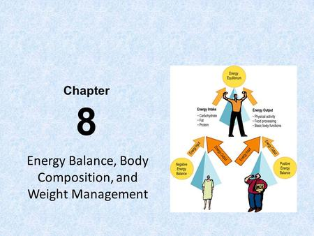 Energy Balance, Body Composition, and Weight Management