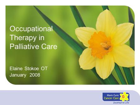 Occupational Therapy in Palliative Care Elaine Stokoe OT January 2008.