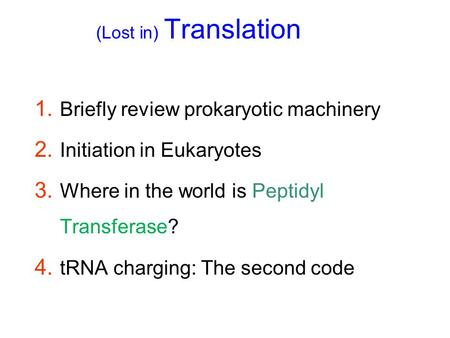 (Lost in) Translation 1. Briefly review prokaryotic machinery 2. Initiation in Eukaryotes 3. Where in the world is Peptidyl Transferase? 4. tRNA charging: