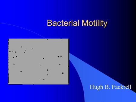 Bacterial Motility Hugh B. Fackrell. 2 8/5/2015 Presentation Outline l Bacterial Flagella l Location l Function l Structure l Bacterial vs eukaryotic.