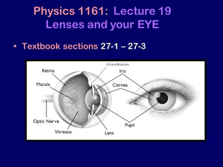 Physics 1161: Lecture 19 Lenses and your EYE