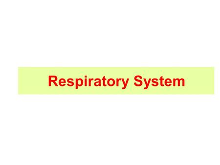 Respiratory System. Respiratory system structure Upper respiratory system –nose –Pharynx –larynx Upper part Functions: 1.Filtration 2.Warming 3.Moistering.