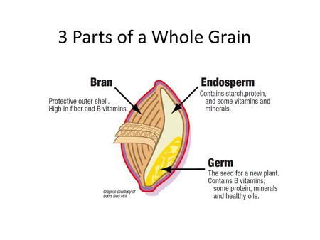 3 Parts of a Whole Grain.