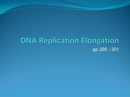 Pp 295 - 301. 2. Replication Elongation DNA polymerase – enzyme which does what? In what direction? What is the main version responsible for replication?