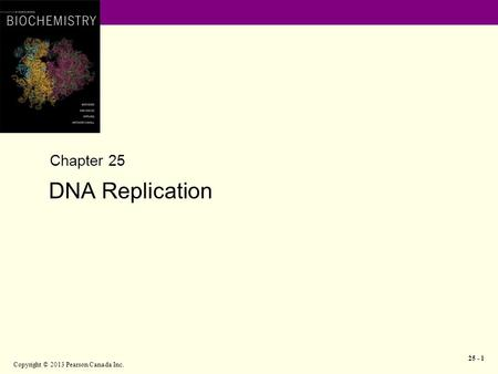 Copyright © 2013 Pearson Canada Inc. 25 - 1 Chapter 25 DNA Replication.