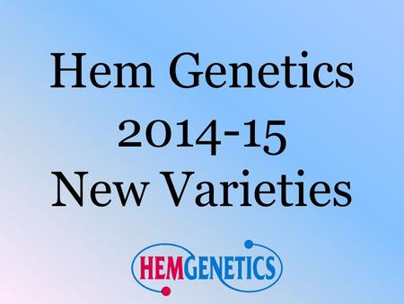 Hem Genetics 2014-15 New Varieties. Hem Genetics New Varieties 2013/14 3 new Low Grow items, 2 Mambo *GP* Petunias, and 1 Nano Geranium variety A new.